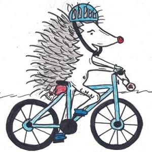 erizo logo bici 370