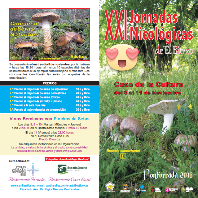jornadas-micologicas-cantharellus